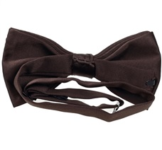 Brown satin bow tie reverse