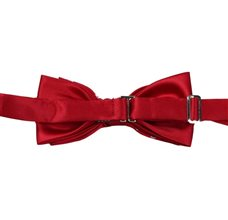 Reverse red bow tie with disegn