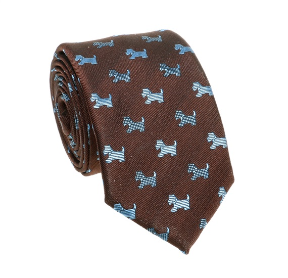 Brown Teenager's Tie with Blue Schnauzer