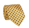 Yellow Tie with Blue Dots