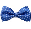 Royal Blue Bow Tie and Pocket Square with Daisies