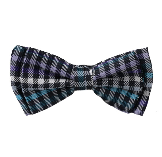 Blue and Purple Vichy Checked Boy's Bow Tie