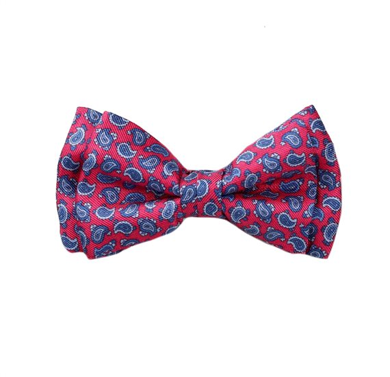 Red Silk Boy's Bow Tie with Paisley