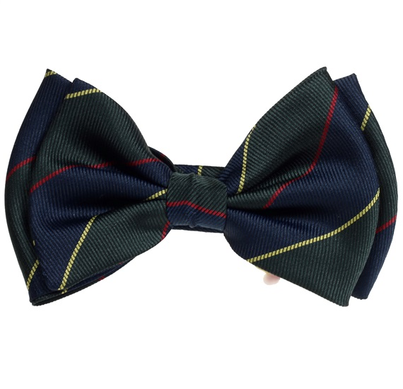 Silk Boy's Bow Tie with Dark Blue and Green Stripes