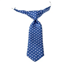 Royal Blue Baby's Tie with Pink Paisley