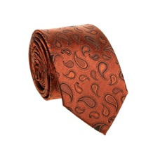 Terracotta Paisley Natural Silk Tie