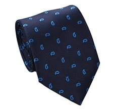 Blue Teenager's Tie with Paisley