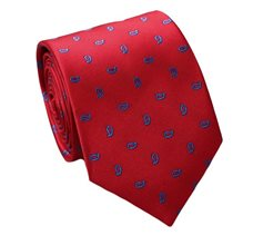 Red Teenager´s Tie with Paisley