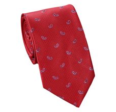 Red Teenager's Tie with Blue Paisley
