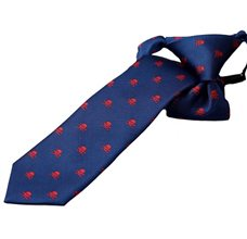 Blue Boy's Tie with Skulls