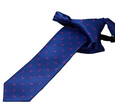 Royal Blue Boy's Tie with Paisley
