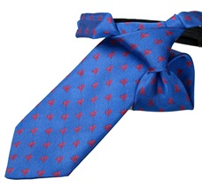 Royal Blue Boy's Tie with Red Skulls