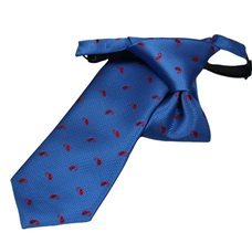 Royal Blue Boy's Tie with Red Paisley