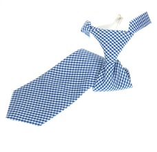 Royal Blue Vichy-Check Boy's Tie
