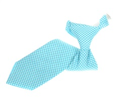 Turquoise Vichy-Check Boy's Tie