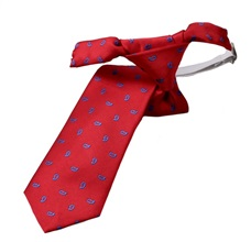Red Boy's Tie with Blue Paisley