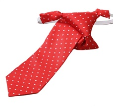 Red Boy's Tie with White Dots