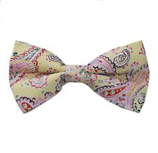 Yellow Bow Tie with Paisley
