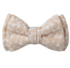 Baby's Bow Tie with Beige Paisley