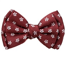 Burgundy Baby's Bow Tie with Daisies
