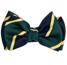Dark Blue and Green Stripes Silk Baby's Bow Tie