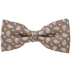Beige Bow Tie with White Cashmere
