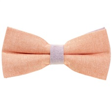Salmon and Mauve Bow Tie