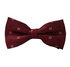 Bordeaux Bow Tie with Drawing