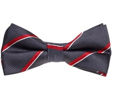 Purple Grey Bow Tie with Red Stripes