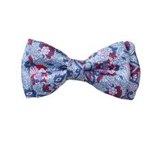 Blue Boy's Bow Tie with Flowers and Paisley