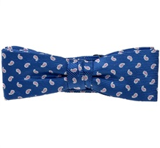 Royal Blue Boy's Bow Tie with Pink Paisley