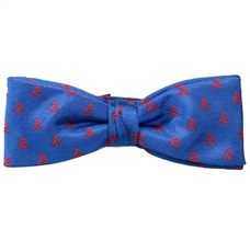 Royal Blue Boy's Bow Tie with Skulls