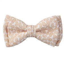 White Boy's Bow Tie with Paisley