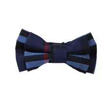 Blue and Red Tartan Boy's Bow Tie