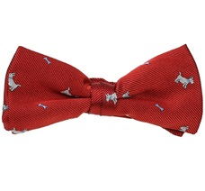 Garnet Boy's Bow Tie with White Schnauzer