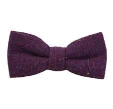 Jasbiated Purple Boy's Bow Tie with Colors