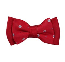 Red Boy's Bow Tie with Design