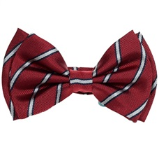 Garnet Silk Boy's Bow Tie with White Stripes
