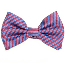 Silk Boy's Bow Tie with Red and Blue Stripes