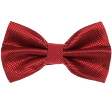 Garnet Satin Dress Bow Tie