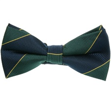 Deep Blue and Green Stripes Bow Tie