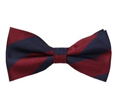 Blue and Burgundy Stripes Bow Tie