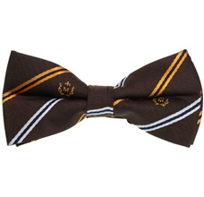 Brown and Yellow Stripes Bow Tie