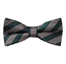 Green and Beige Stripes Bow Tie