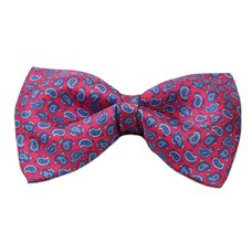 Red Silk Bow Tie with Blue Paisley