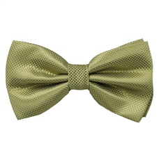 Light Green Dress Bow Tie
