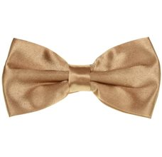 Camel Bow Tie and Pocket Square