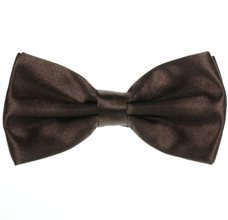 Dark Brown Bow Tie and Pocket Handkerchief