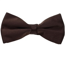 Brown Satin Bow Tie and Pocket Square