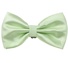 Sea Green Bow Tie and Pocket Square